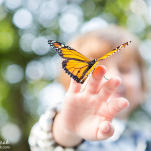 Butterfly Release Family Photos {Hamilton, NJ Photographer}